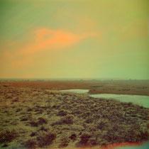 "vintage style photo taken in Delta del Llobregat in Barcelona, ""Lonely Landscape"""