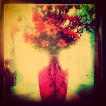 vintage style photo, vintage flowers of Augusts, retro style flowers photo