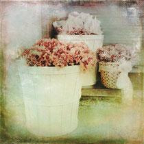 vintage style photo, vintage street flowers, retro style flowers basket photo