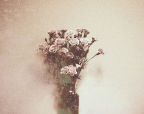 vintage style photo, still life, abstract vintage flowers, carnations