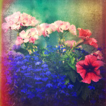 vintage style photo, textured and handpainted, flowers of my joy, retro style flowers photo