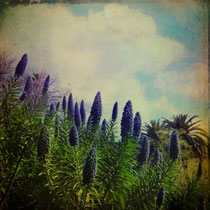vintage style photo, textured and hand painted, spring love, taken in Ciudadela Park in Barcelona