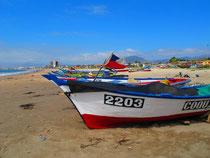 Chilenische Meeresküste