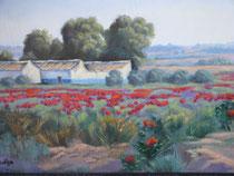 Paysage de la Mancha, par Elena Belloso