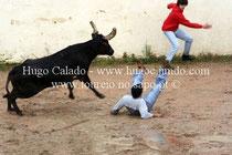 David Palmeiro eFelipe Redondo