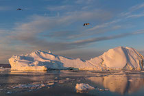 Bootstour Ilulissat