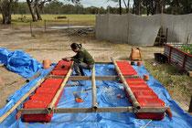 Raft work in progress:Roger Soong, October 2013