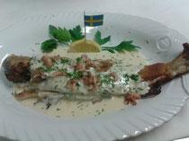 Schweden~frische Krabben in leichter Weißweinsauce mit Dill verfeinert