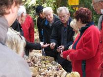 Einer unserer Fachleute erklärt die Pilze.