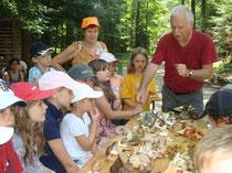 Claus erklärt die diversen Pilze und ihre Merkmale.