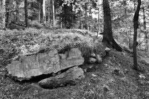 Bunkerrest (Hartmannsweilerkopf / Vogesen)