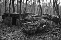 Teilgesprengte Munitions-Unterstände (Sentier á Burnhaupt / Sundgau)