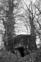 Beobachtungsposten (Circuit du Haulenwald / Sundgau)
