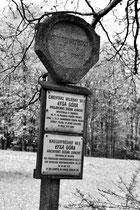 Kriegerfriedhof Nr. 9 (Polen)