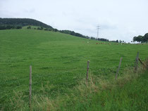 weiter nach Bad Fredeburg bis auf 536 m