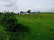 Bauernhof mit Aussicht