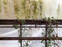 Kutscherhaus und Garten 22