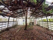 Kutscherhaus und Garten 19