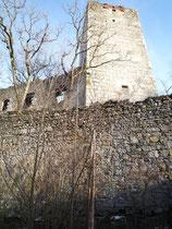 Burgruine Spilberg, 2012