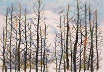 D1-07   冬木立