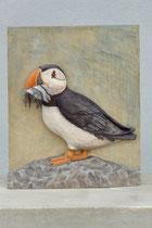 Papageientaucher, Linde, 20x16 cm