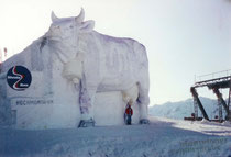 Größte Milka-Kuh der Welt – 17 Meter lang, über 9 Meter hoch
