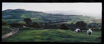 """""""Wicklow Sheep"""" Gouache on blackboard 35x60cm SOLD"""