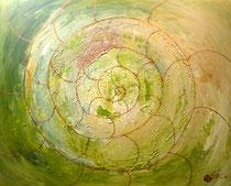 Ammonit . 100 x 80 cm