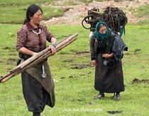 Femmes nomades au travail