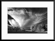 Cirruswolke, bei Provence, Jura. Einzel-Abzug auf Hahnemühle Photo Rag. Foto-Format 40 x 27 cm. Passepartouriert, gerahmt, hinter UV-Glas. Edition limitiert (1 +19). Preis: 1150 CHF.