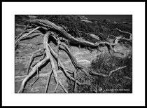 Im verlorenen Tal 1. Einzel-Abzug auf Archival-Fine-Art-Papier. Foto-Format 50 x 34 cm. Passepartouriert, gerahmt, hinter UV-Glas. 10 Abzüge. Preis: 1450 CHF.