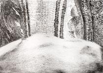 Das Wilde XVII, 2017. Graphite on paper. 42x30cm.
