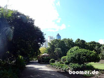 Brisbane-Skyline vom botanischen Garten aus