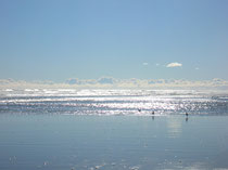 Waikawa Beach (Westcoast)