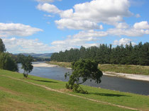 Manawatu River in Palmerston North