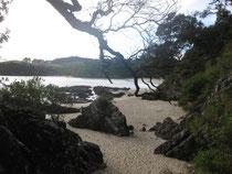 Waheke Island