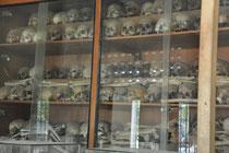 menschliche Überreste die im Hof gefunden wurden