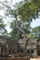 eine Tempelanlage 4 km östlich von Angkor Wat.