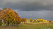 Leuchtende Farben vor dunklen Gewitterwolken