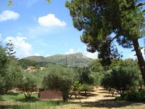 Blick zum Skopos