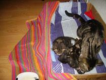 Nelly & Geschwister bei ihrer Mutter