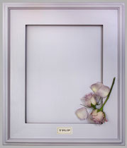 TULIP   A pale lavender. Soft and pretty. A nice counterpoint to dark browns.
