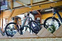 e-Bikes, Pedelecs und Speed-Pedelecs kaufen, Beratung und kostenlose Probefahrt in Ahrensburg
