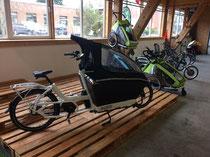 Lastenfahrräder von Urban Arrow in der e-motion e-Bike Welt Ahrensburg