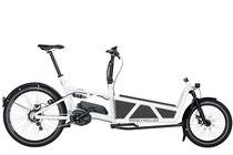 Lasten und Cargo e-Bikes in der e-motion e-Bike Welt Schleswig kaufen