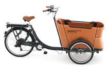 Lasten und Cargo e-Bikes in der e-motion e-Bike Welt Oberhausen kaufen