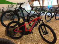Focus e-Mountainbikes Beratung, Probefahrt und kaufen in Ahrensburg