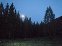 Aberndstille Mondnacht auf der Almhütte