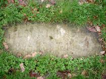 Kamień nagrobkowy kota Panien Mycielskich