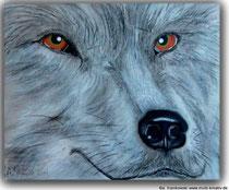 Acrylbild Wolf  Mit silbermetallic Acrylfarben gemalt und mit Pastellkreide schattiert. Größe: 50x60x2cm, Jahr: 2011, Preis: 280€